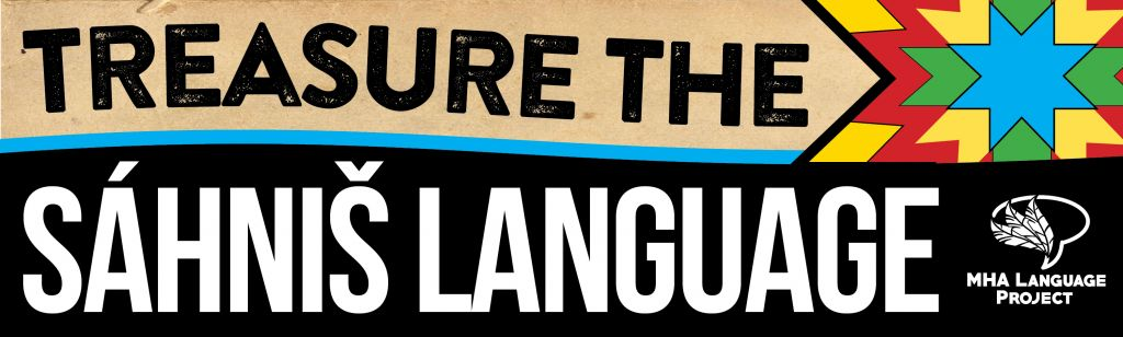 Treasure the language bumper stickers2